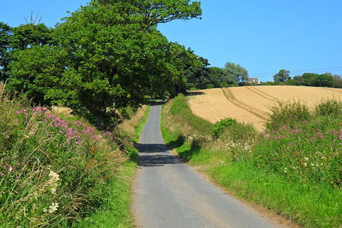 See what I mean? Lovely road to freewheel down, don't rush, take in the surroundings!