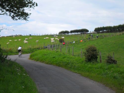 The first steep section, this comes not long after the start.