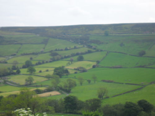 The view of the climb from across the valley, it zigzags up following the line of trees